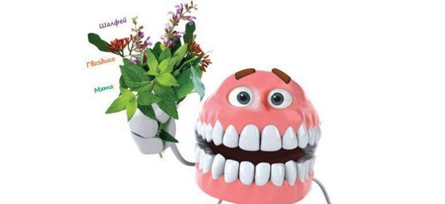 Здоровое питание для зубов мы то что мы едим